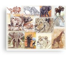 South Africa's wildlife wonders Canvas Print