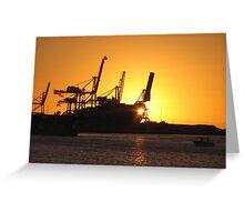Cranes at Sunset Greeting Card