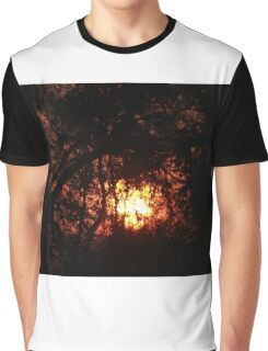 Fiery Sunset Through The Eucalypts Graphic T-Shirt