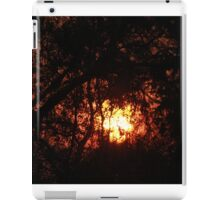Fiery Sunset Through The Eucalypts iPad Case/Skin