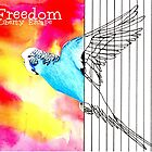Freedom by Diane McWhirter