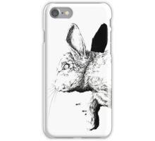 Natural History - Rabbit iPhone Case/Skin