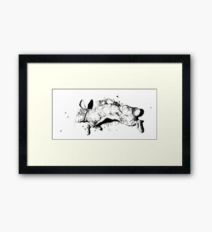 Natural History - Rabbit Framed Print