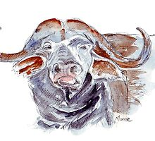 African buffalo or Cape buffalo (Syncerus caffer) by Maree Clarkson