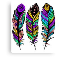 Colorful Tribal Feathers illustration Canvas Print