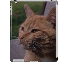 Franklin iPad Case/Skin