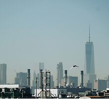 Freedom Tower in the Distance  by TheMrZ