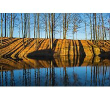 Reflective Percussions Photographic Print