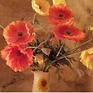 Orange and Yellow Poppies by Angela Gannicott