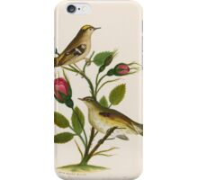 Slaney, Elizabeth Harriet FOUR NATURAL HISTORY WATERCOLOUR ALBUMS. iPhone Case/Skin