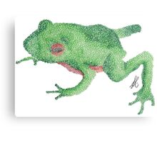 Green/Orange Frog Metal Print