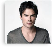 Ian Somerhalder Damon Salvatore by bas Canvas Print