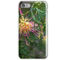 Australian native II iPhone Case/Skin