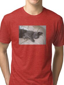 Grey Kitten Relaxed On A Bed Tri-blend T-Shirt