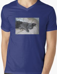 Grey Kitten Relaxed On A Bed Mens V-Neck T-Shirt