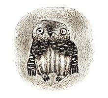 Little Owl Sitting In a Hollow Photographic Print