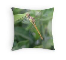 Green and Brown Dragonfly Holding On To Oleander Throw Pillow