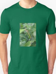 Green and Brown Dragonfly Holding On To Oleander T-Shirt