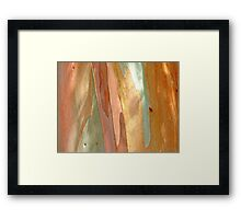 nature´s touch Framed Print