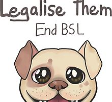 End BSL by artisart