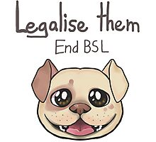 End BSL Photographic Print