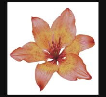 Coral Colored Lily Isolated on White Kids Tee