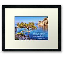 Lonely pine   Framed Print