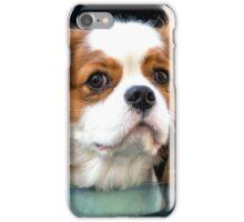Hello Mr Doggy  iPhone Case/Skin
