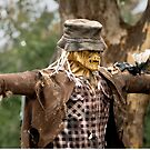 1001 The Scarecrow by DavidsArt