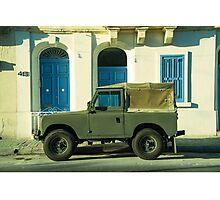 Maltese Landy  Photographic Print