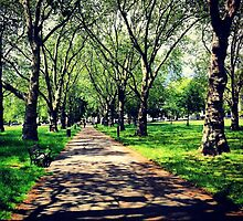 London Summer Park Path by lanesloo