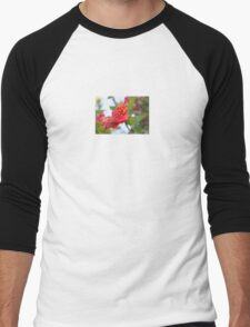 Curled Petals of A Red Hibiscus Bud Men's Baseball ¾ T-Shirt