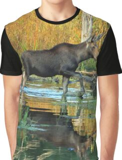 Maine Moose Graphic T-Shirt