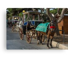 Row of horse with carriages in Mdina, Malta Canvas Print