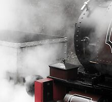 Letting Off A Little Steam by mhuckfield