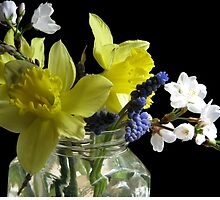 Spring Bouquet by AngieDavies