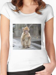 Baby Barbary macaques in Gibraltar Women's Fitted Scoop T-Shirt