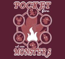 Pocket Monsters - Fire by Vitalitee