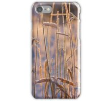 Frost Pipes iPhone Case/Skin