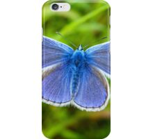 A male Common Blue butterfly iPhone Case/Skin