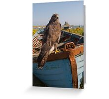 Common Buzzard on Lindisfarne Greeting Card
