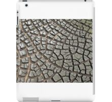 Mud crack iPad Case/Skin