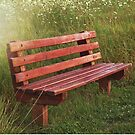 Meadow Bench by Maria Dryfhout