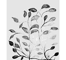 Red and Green Leaves! Romantic Silver Grey! Photographic Print