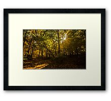 Weinberg Nature Ctr Framed Print