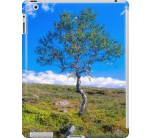 Landscape with a lonely tree iPad Case/Skin