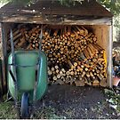 Woodpile by Barbara Wyeth