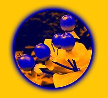 Berries yellow by pixies000