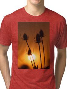 Teasel autumn sunset Tri-blend T-Shirt