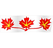 Red Maple Leaves Canadian Standard Symbol Poster